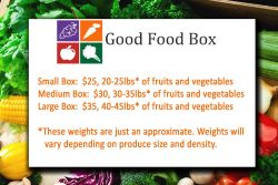 Good Food Box